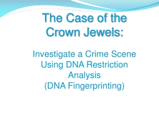 The Case of the  Crown Jewels: