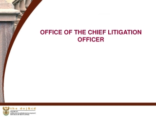OFFICE OF THE CHIEF LITIGATION OFFICER