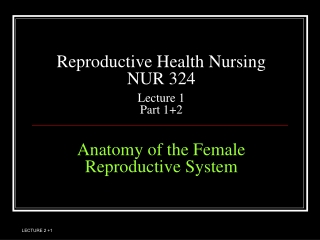 Reproductive Health Nursing NUR 324 Lecture 1 Part 1+2 Anatomy of the Female Reproductive System