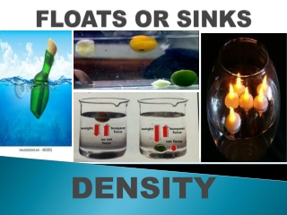 FLOATS OR SINKS