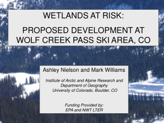 WETLANDS AT RISK:   PROPOSED DEVELOPMENT AT WOLF CREEK PASS SKI AREA, CO