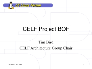 CELF Project BOF