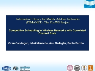 Information Theory for Mobile Ad-Hoc Networks (ITMANET): The FLoWS Project