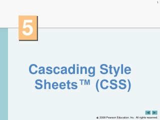 Cascading Style Sheets™ (CSS)