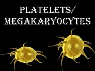 Platelets/  megakaryocytes