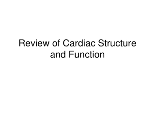 Review of Cardiac Structure and Function
