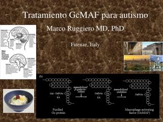 Tratamiento  GcMAF  para autismo Marco Ruggiero MD, PhD Firenze, Italy