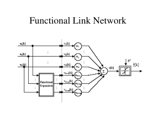 Functional Link Network