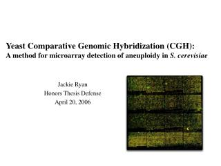 Yeast Comparative Genomic Hybridization (CGH):   A method for microarray detection of aneuploidy in  S. cerevisiae
