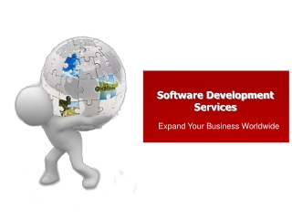 Software Development Services to Expand Your Business Worldw