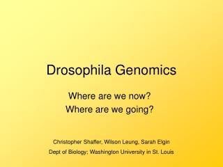 Drosophila Genomics