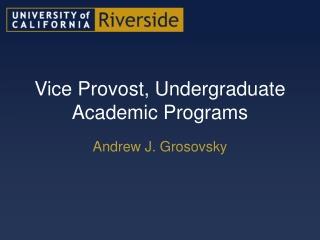 Vice Provost, Undergraduate Academic Programs