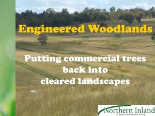 Engineered Woodlands