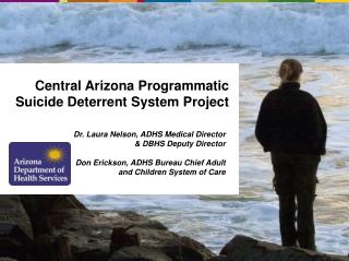 Central Arizona Programmatic Suicide Deterrent System Project