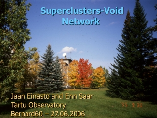 Superclusters-Void Network