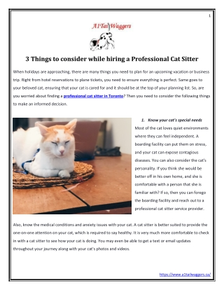 3 Things to consider while hiring a Professional Cat Sitter
