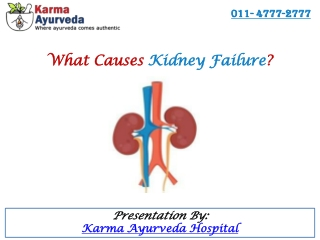 What Causes Kidney Failure?