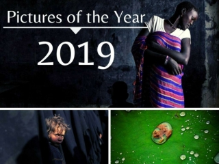 2019 The Year in Pictures
