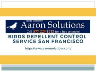 Birds Repellent Control Service San Francisco