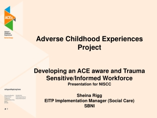 Adverse Childhood  Experiences Project