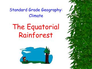 The Equatorial Rainforest