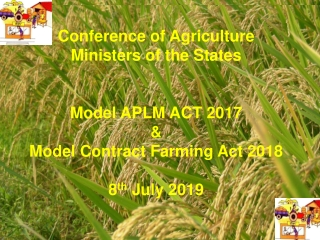 Agriculture Marketing – Need for Reforms & Development