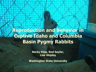 Reproduction and Behavior in Captive Idaho and Columbia Basin Pygmy Rabbits