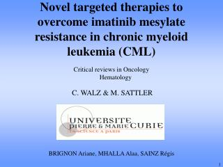 Novel targeted therapies to overcome imatinib mesylate resistance in chronic myeloid leukemia (CML)