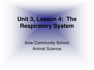 Unit 3, Lesson 4:  The Respiratory System