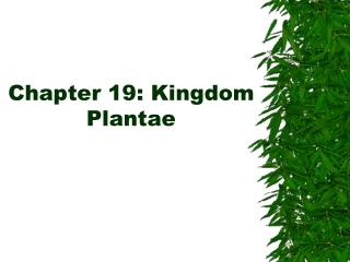 Chapter 19: Kingdom Plantae