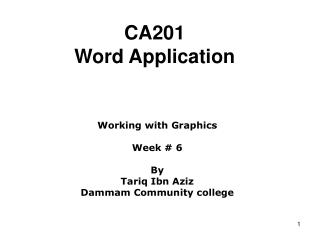 CA201 Word Application