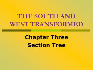 THE SOUTH AND WEST TRANSFORMED