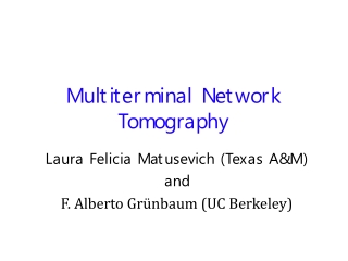 Multiterminal Network Tomography