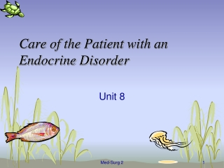 Care of the Patient with an Endocrine Disorder