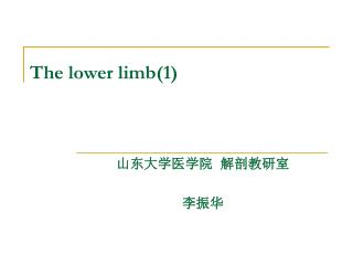 The lower limb(1)