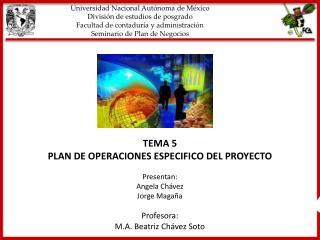 Universidad Nacional Autónoma de México División de estudios de posgrado Facultad de contaduría y administración Seminar