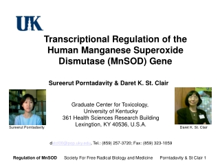 Transcriptional Regulation of the  Human Manganese Superoxide  Dismutase (MnSOD) Gene