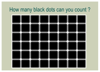 How many black dots can you count ?