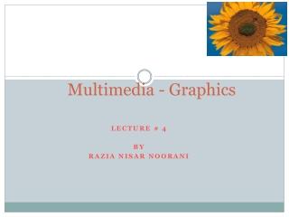 Multimedia - Graphics