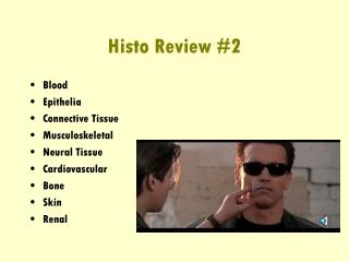 Histo Review #2