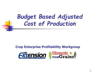 Budget Based Adjusted  Cost of Production