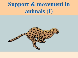 Support & movement in animals (I)