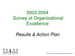 2003-2004  Survey of Organizational Excellence   Results  Action Plan
