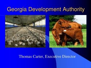 Georgia Development Authority