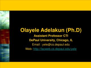 Olayele Adelakun (Ph.D) Assistant Professor CTI DePaul University, Chicago, IL Email : yele@cs.depaul.edu Web:  http://f