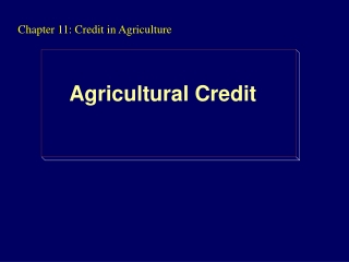 Chapter 11: Credit in Agriculture