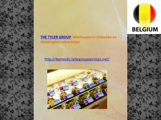 THE TYLER GROUP│Marihuana in Colorado en Washington uitverko