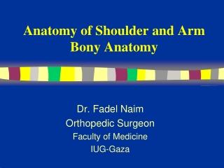 Anatomy of Shoulder and Arm  Bony Anatomy