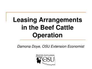 Leasing Arrangements in the Beef Cattle Operation