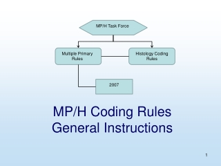 MP/H Coding Rules  General Instructions